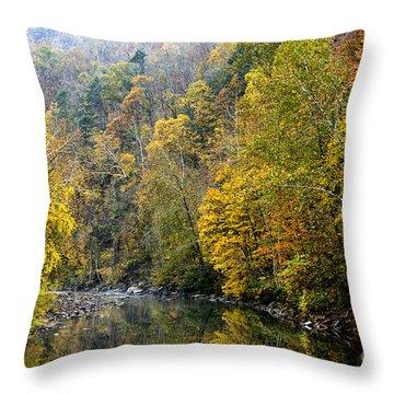 Autumn Elk River Throw Pillow by Thomas R Fletcher