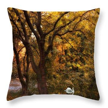 Autumn Glow Throw Pillow