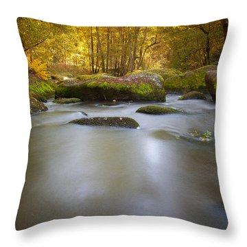 Waldnaab Tal  Throw Pillow