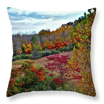 Autumn In Full Bloom Throw Pillow