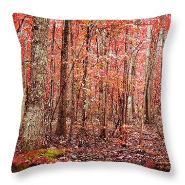 Autumn Landscape Throw Pillow by Kim Fearheiley