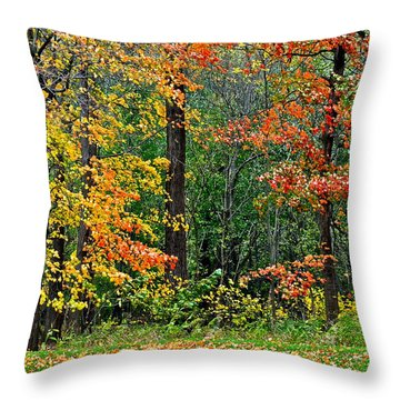 Autumn Landscape Throw Pillow by Frozen in Time Fine Art Photography