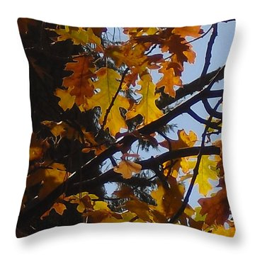 Throw Pillow featuring the photograph Autumn Leaves by Kristen R Kennedy