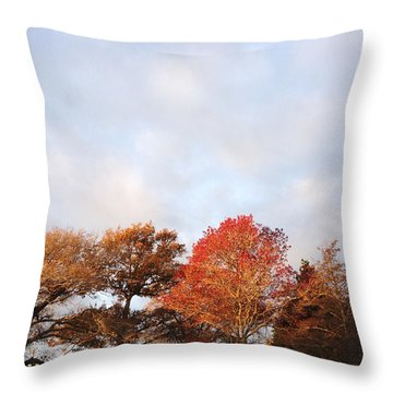 Autumn Throw Pillow by Les Cunliffe