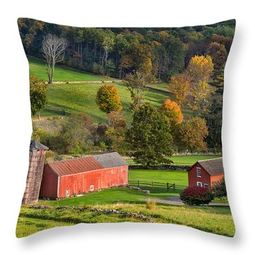 Autumn Light Throw Pillow by Bill Wakeley
