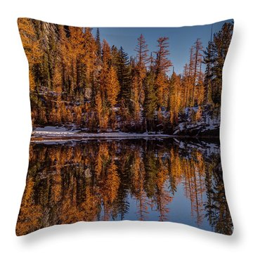 Autumn Reflected Throw Pillow by Mike Reid