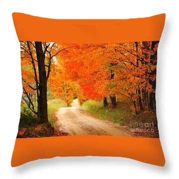 Throw Pillow featuring the photograph Autumn Trail by Terri Gostola