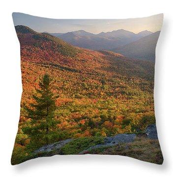 Autumn Trees On Mountain, Baxter Throw Pillow