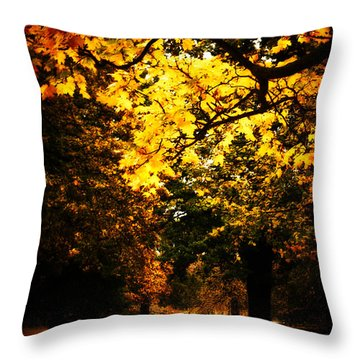 Autumnal Walks Throw Pillow