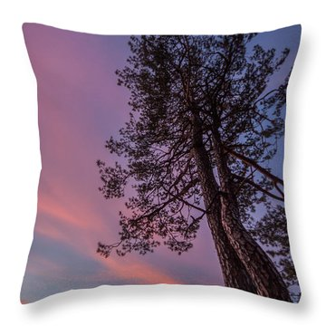 Throw Pillow featuring the photograph Awakening by Davorin Mance