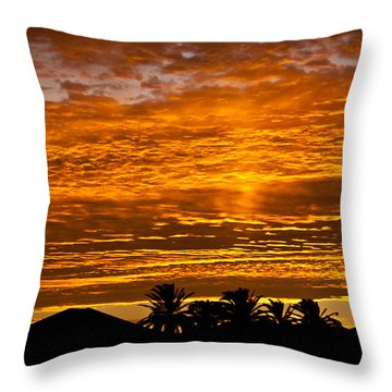 1 Awsome Sunset Throw Pillow by Brian Williamson