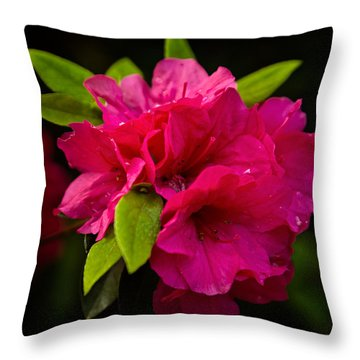Sprouting Out Throw Pillow