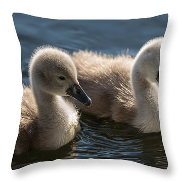 Baby Swans Throw Pillow by Michael Mogensen