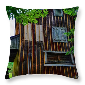 Back Of The Sugar Shack Throw Pillow