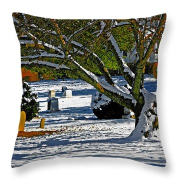 Baldwin Memorial United Methodist Church Cemetery Throw Pillow by Andy Lawless