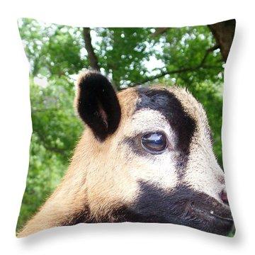 Bambi Throw Pillow by Belinda Lee