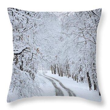 Basswood Drive Throw Pillow