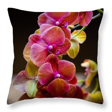 Beauty Of Orchids  Throw Pillow by Julie Palencia