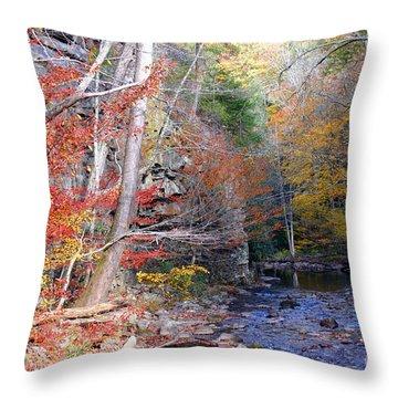 Beaverdam Creek Throw Pillow by Annlynn Ward