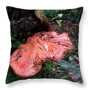 Bracket Fungus Throw Pillows