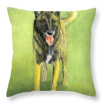 Belgian Malinois  Throw Pillow by Ruth Seal