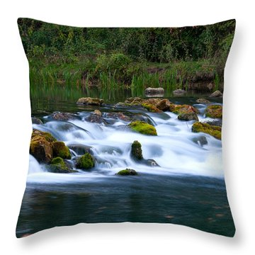 Bennett Spring Throw Pillow by Steve Stuller