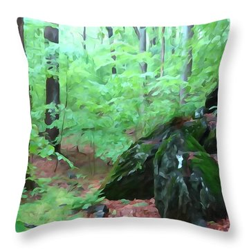 Throw Pillow featuring the photograph Beside The Trolley Trail by Dana Sohr