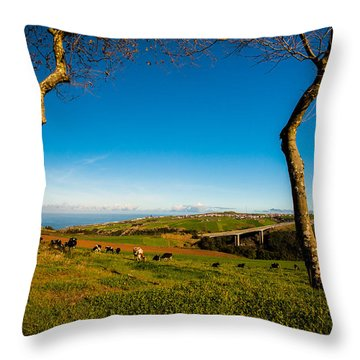 Between Two Trees Throw Pillow