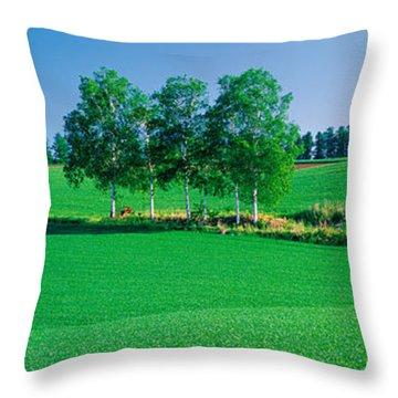 Biei-cho Hokkaido Japan Throw Pillow