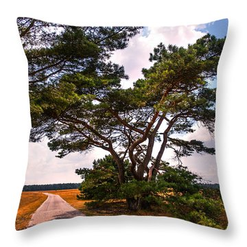 Bike Track In Hoge Veluwe National Park. Netherlands Throw Pillow by Jenny Rainbow