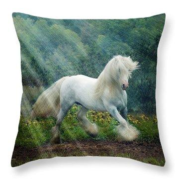 Billy Rays Throw Pillow by Fran J Scott
