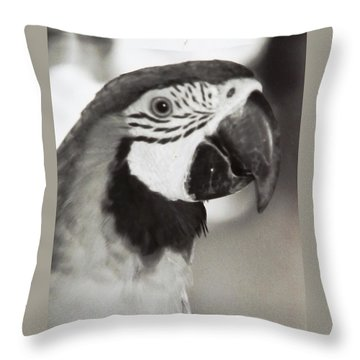 Throw Pillow featuring the photograph Black And White Parrot Beauty by Belinda Lee