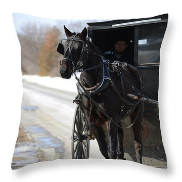 Black Beauty Throw Pillow by Linda Mishler