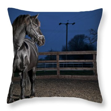 Black Fiesian Horse Throw Pillow