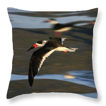 Black Skimmer Beach Throw Pillow