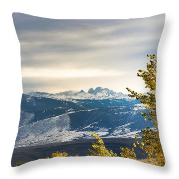 Blacktooth Throw Pillow