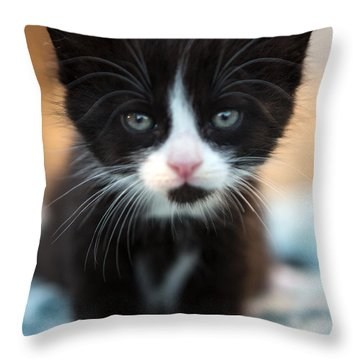 Black And White Kitten Throw Pillow