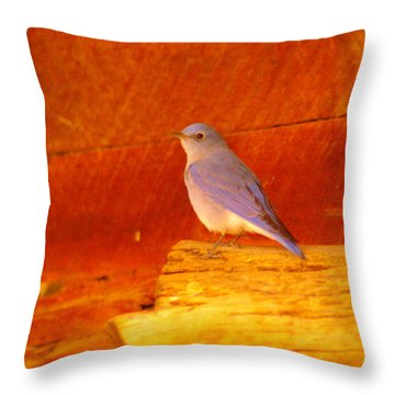 Blue Bird Throw Pillow by Jeff Swan
