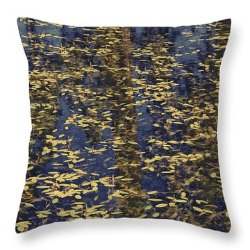 Blue Lake Reflections Throw Pillow