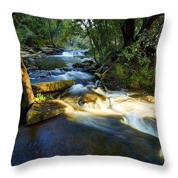 Creamy Cascade Throw Pillow