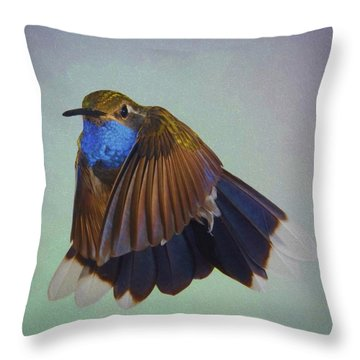 Blue-throated Hummingbird - Wings  Forward Throw Pillow