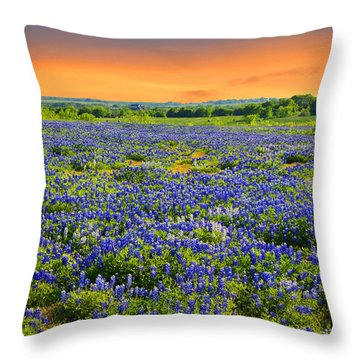 Bluebonnet Sunset  Throw Pillow