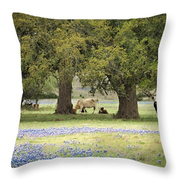 Bluebonnets And Bovines Throw Pillow by Debbie Karnes