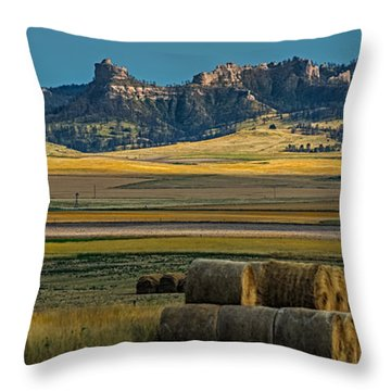 Bluff Country Throw Pillow by Paul Freidlund