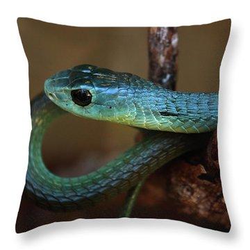 Boomslang Throw Pillow by Aidan Moran