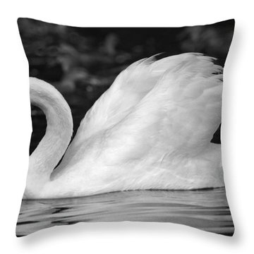 Boston Public Garden Swan Throw Pillow