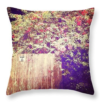 Bougainvillea Throw Pillow by Beth Williams