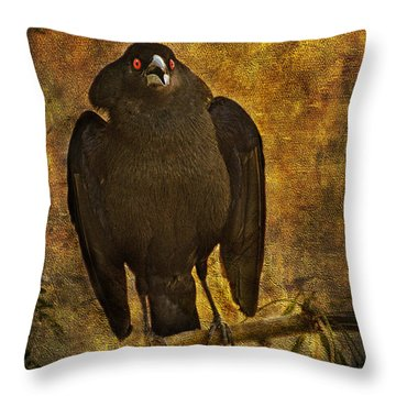 Bronzed Cowbird Throw Pillow by Barbara Manis