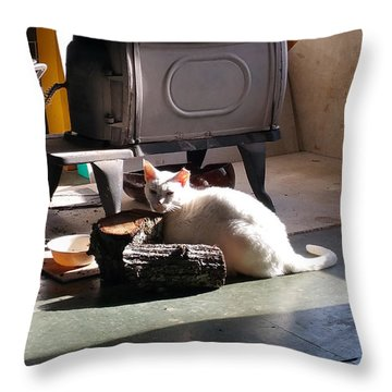 Buddy Enjoying The Sun Throw Pillow by Donna Brown