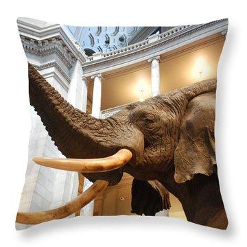 Bull Elephant In Natural History Rotunda Throw Pillow